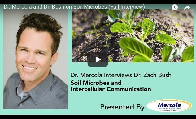 Soil Health, Intercellular Communication and Their Effects on Human Health: A Special Interview With Dr. Zach Bush By Dr. Joseph Mercola